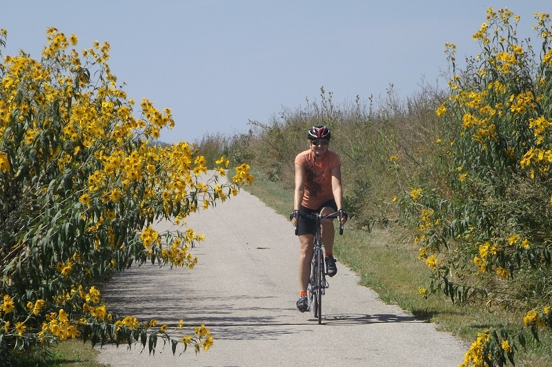 Enjoy pedaling alongside the wild flowers and nature in the Western Minnesota Prairie Waters Area.
