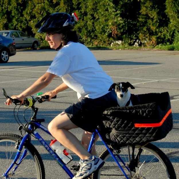 Bring your furry friend with you on your next bike ride to the park.