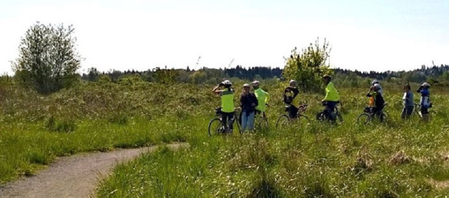 Another birding hotspot is in some of the open meadows that paved bike paths pass through the par