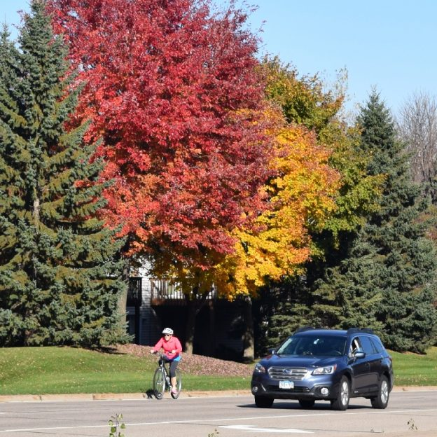 Fall Colors are still prevalent in the southern part of Minnesota.