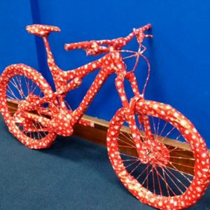 Wacky Saturday time again, any ideas as to what this gift could be? What a very creative way to wrap something. When buying a bike as a gift, please make sure you properly fit it to the person riding.