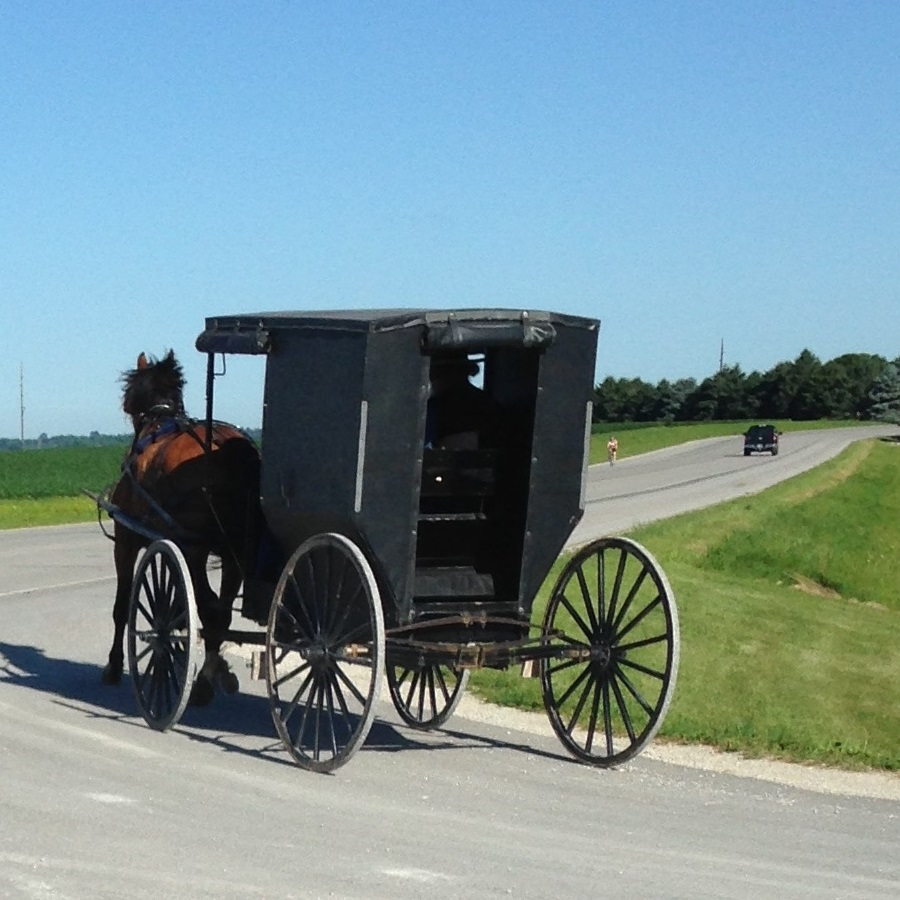 "On you bike, cruise down the ""Buggy Lane"" on Minnesota's Amish Byway."