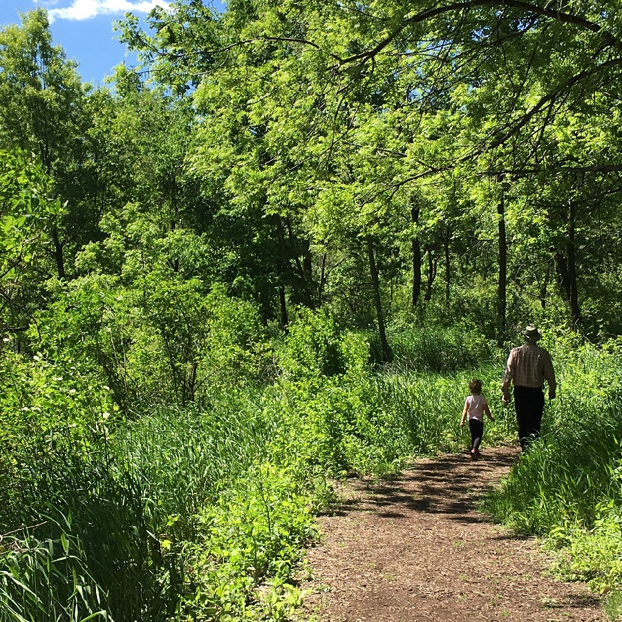 After walking through Springbrooke's Interpretative Center take a stroll down one of the many trails there.