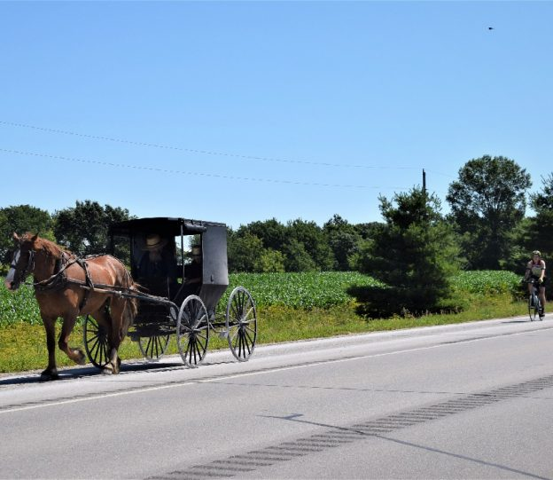 On this Bike Pic Saturday, if you are in southeastern Minnesota on the Amish Buggy Byway, near Harmony, you may have the chance to ride along with a horse drawn carriage.