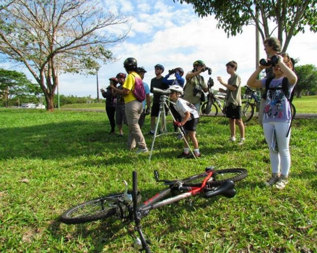 A group of birders set up viewing along the Rice Creek Trail.