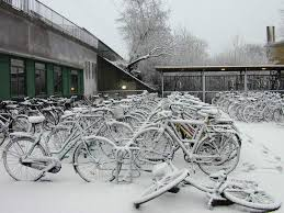 bike-main-8