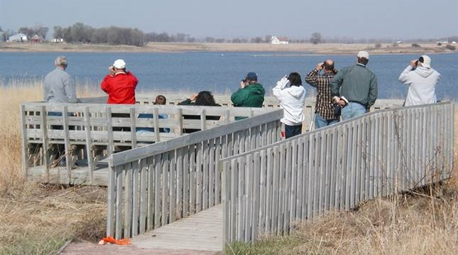 Bird watchers, looking out at several species of waterfall, on Salt Lake.